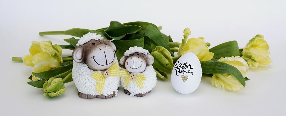 sheep-3264732_960_720
